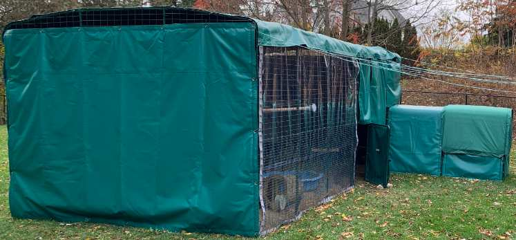 Hen house protected by tarps